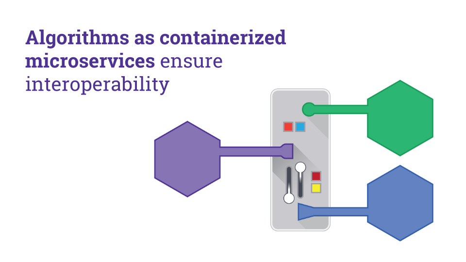 Algorithms as containerized microservices ensure interoperability