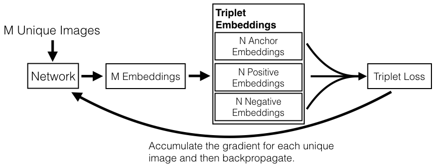 Open-Source Facial Recognition Software—Triplet Embedding Loss