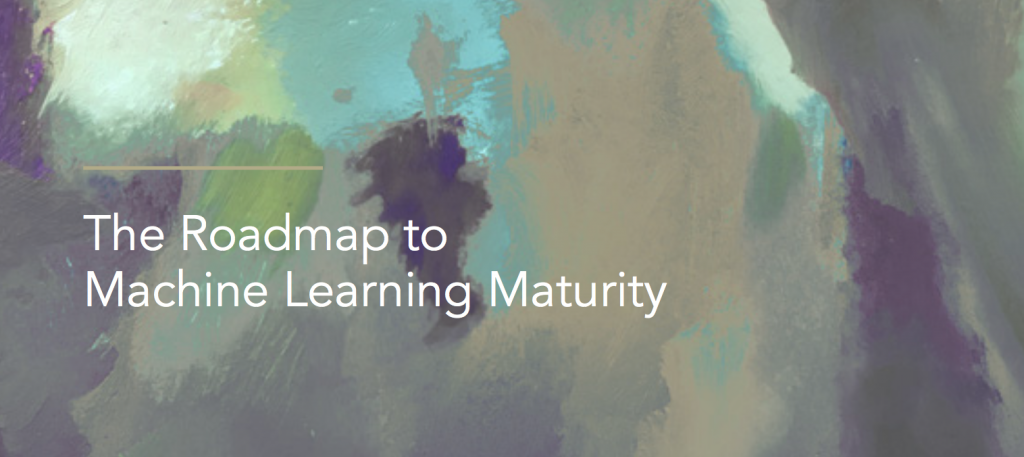 The Roadmap to Machine Learning Maturity