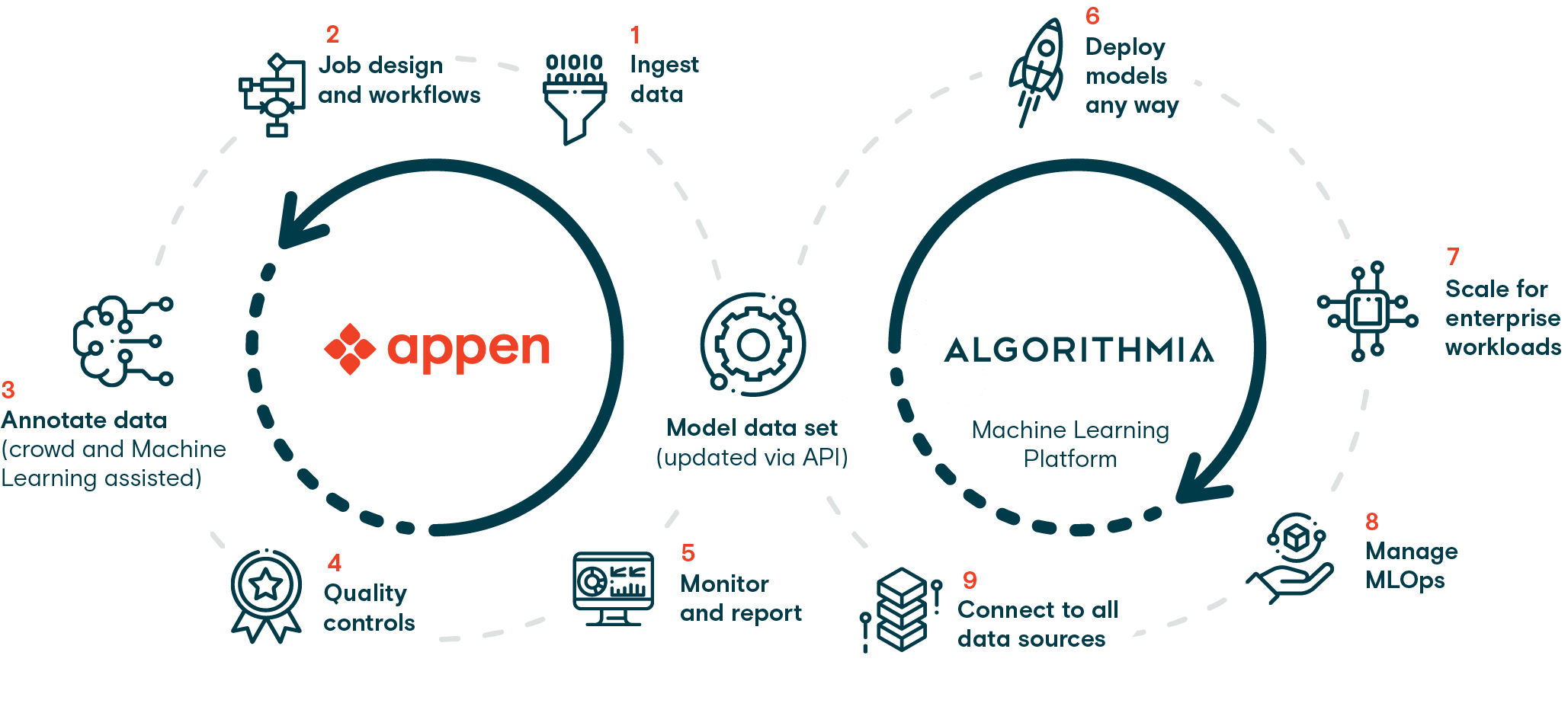 The machine learning lifecycle