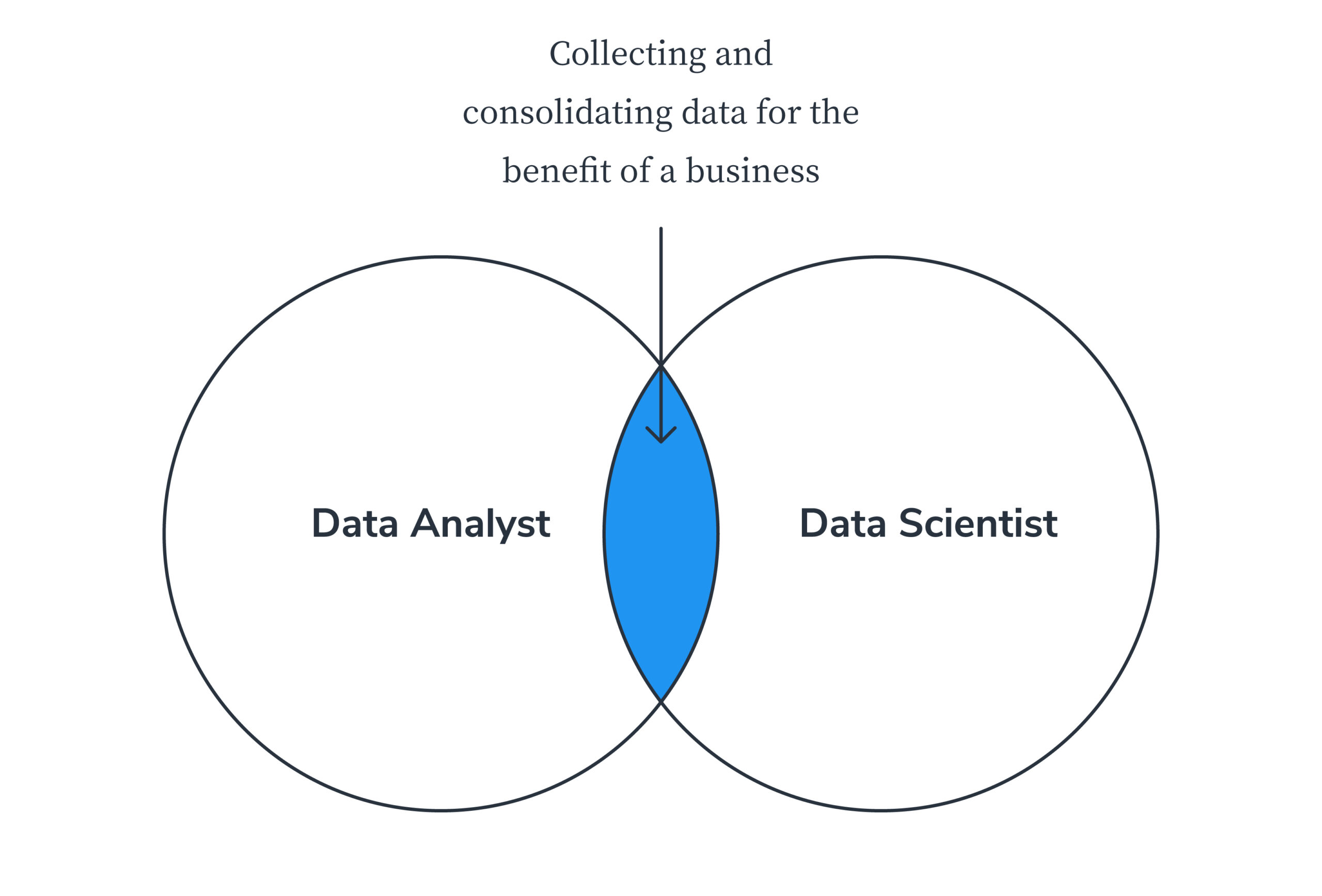 data analyst vs data scientist venn diagram