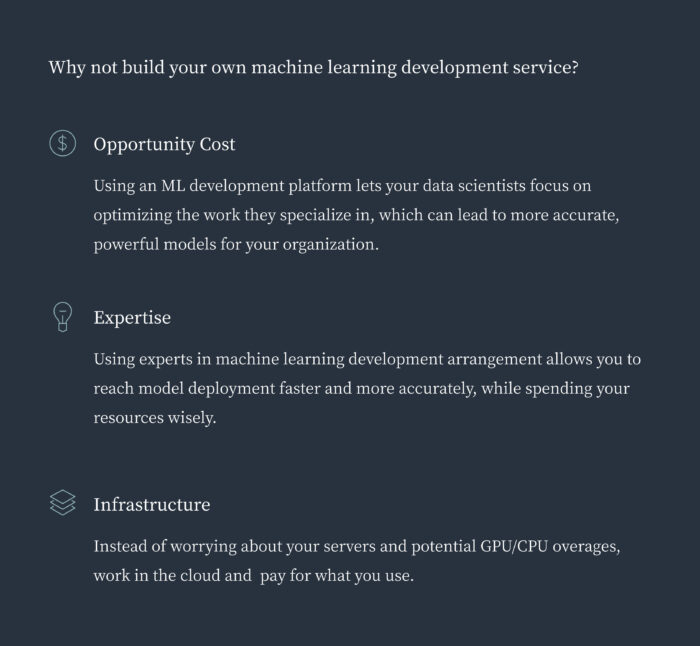 Build vs Buy Machine learning development service
