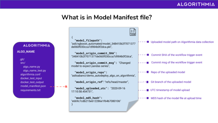 Diagram of what's in the model manifest file